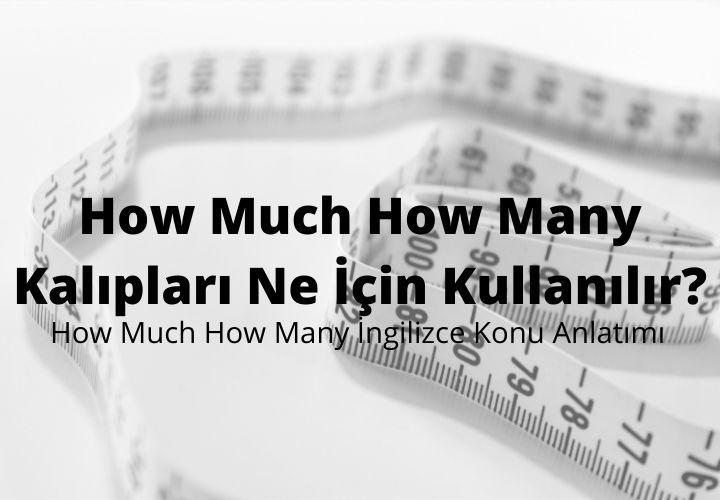 How Much How Many Kalıpları Ne İçin Kullanılır?